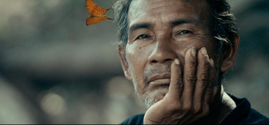 An elder Penan. Image: Tawai.com