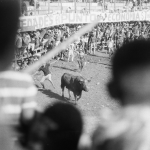Bullfight on a National Holiday. August 2017